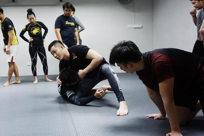 Nogi Wrestling